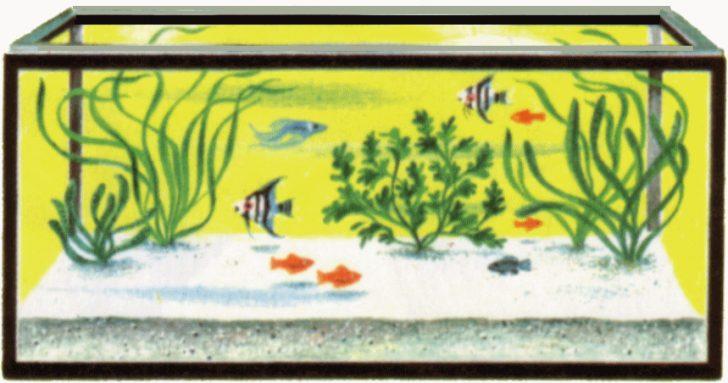 Fishtank clipart #16, Download drawings