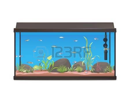 Fish Tank clipart #18, Download drawings