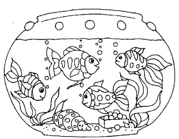 Fish Tank coloring #17, Download drawings