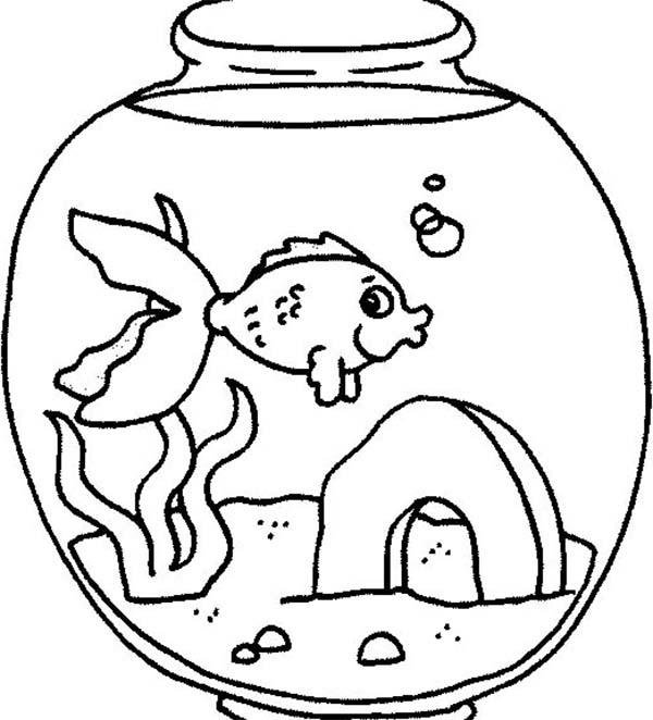 Fish Tank coloring #13, Download drawings
