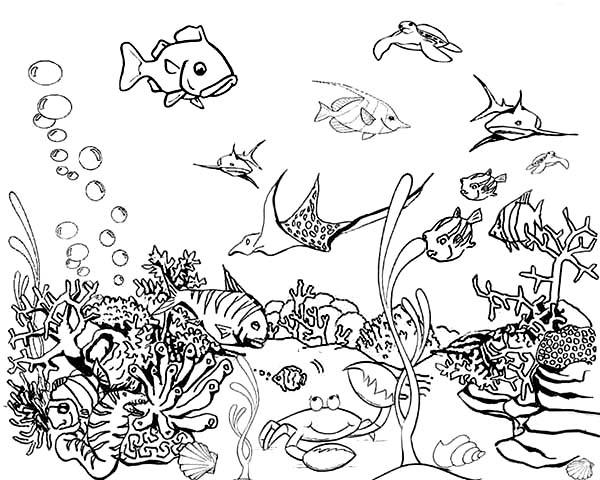 Fish Tank coloring #12, Download drawings
