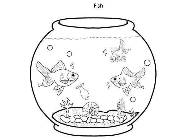 Fish Tank coloring #3, Download drawings