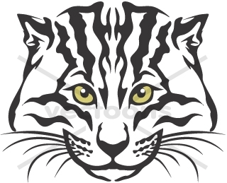 Fishing Cat clipart #5, Download drawings