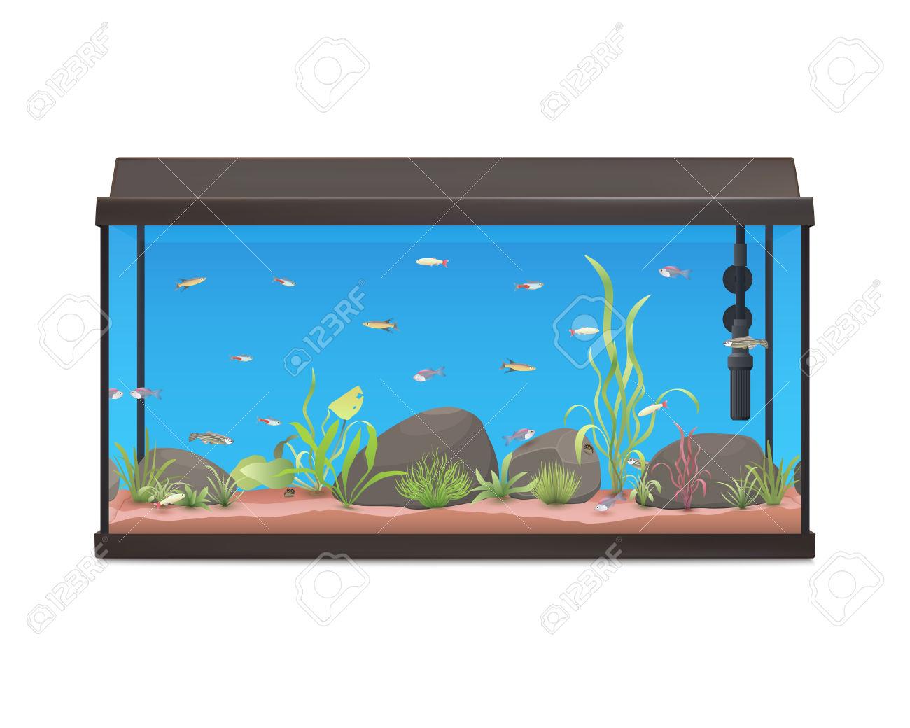 Fishtank clipart #1, Download drawings