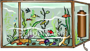 Fishtank clipart #5, Download drawings
