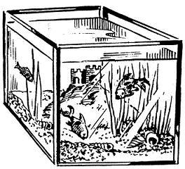 Fishtank clipart #6, Download drawings