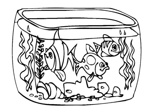 Fishtank coloring #10, Download drawings