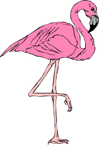 Flamingo clipart #9, Download drawings