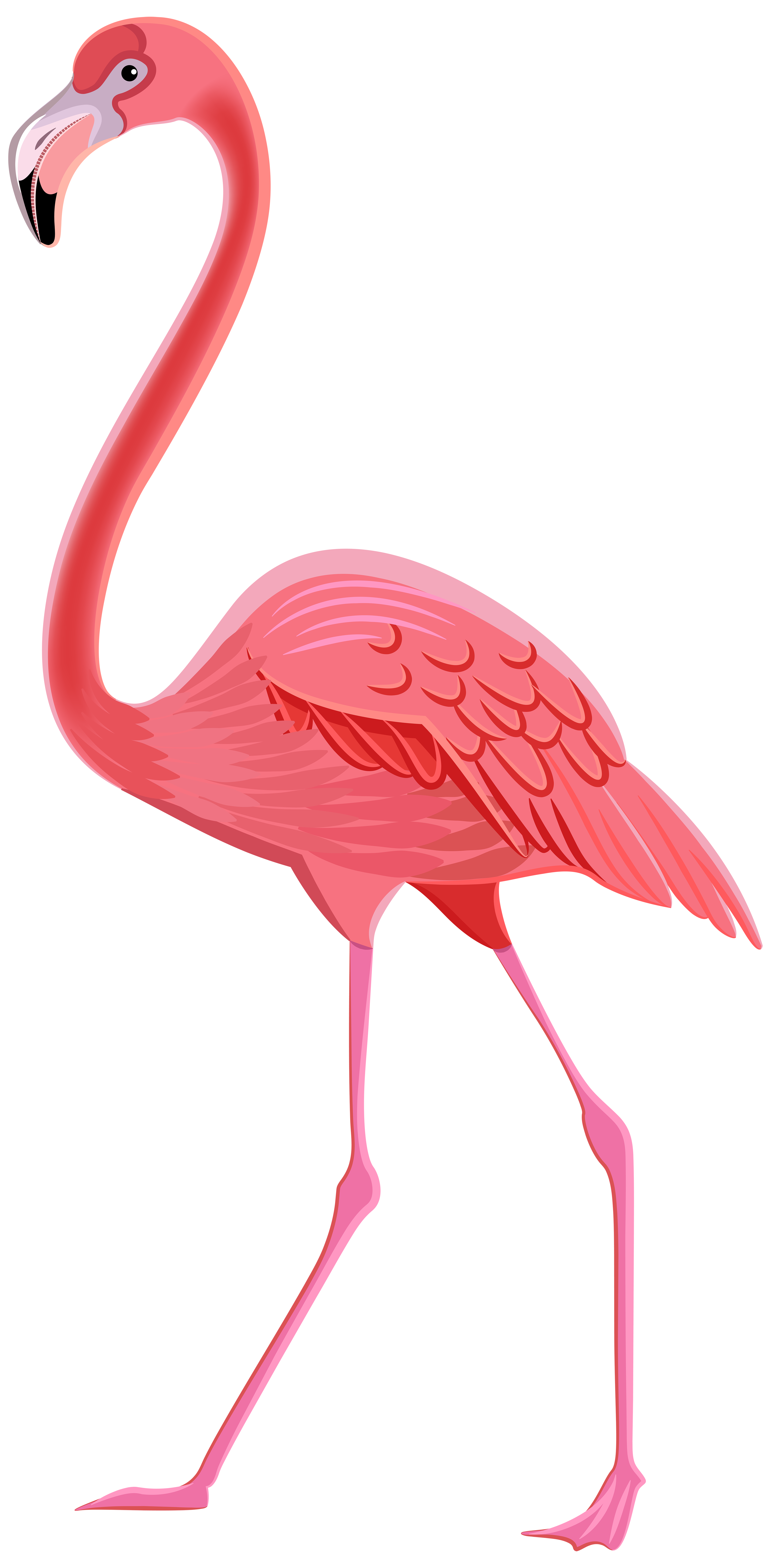 Flamingo clipart, Download Flamingo clipart for free 2019 - photo#7