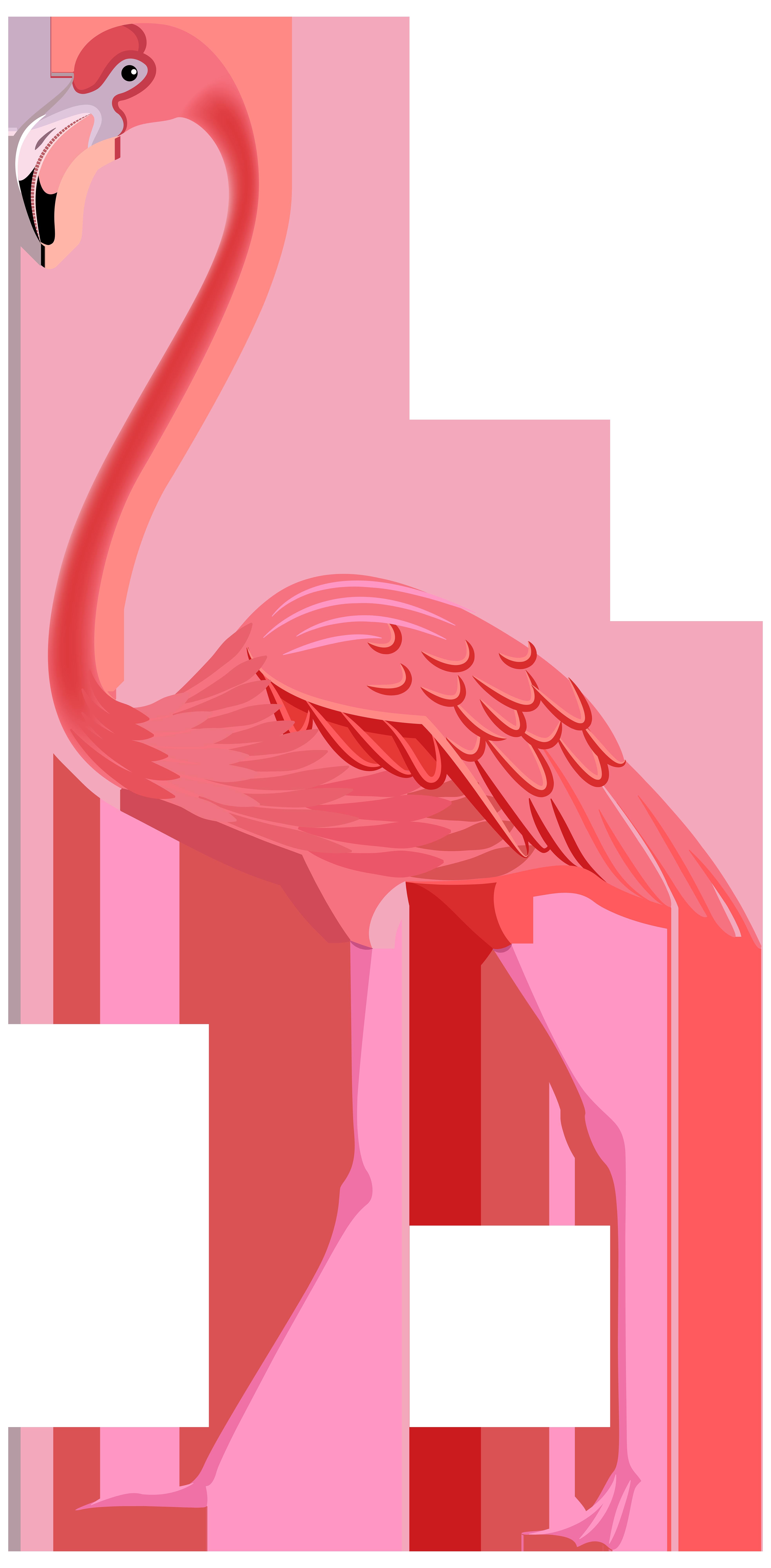Flamingo clipart #1, Download drawings
