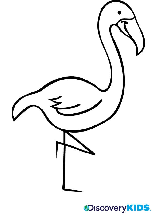 Flamingo coloring #13, Download drawings