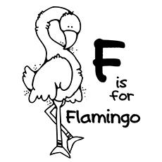 Flamingo coloring #2, Download drawings