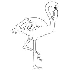 Flamingo coloring #20, Download drawings