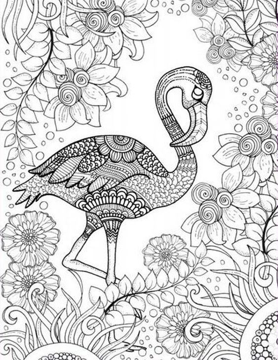 Flamingo coloring #3, Download drawings