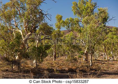 Flinders Ranges clipart #4, Download drawings