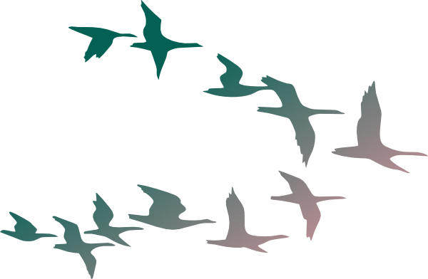 Flock Of Birds clipart #19, Download drawings