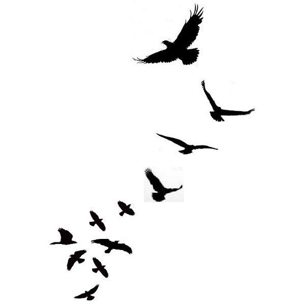 Flock Of Birds clipart #7, Download drawings