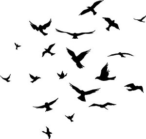 Flock Of Birds clipart #17, Download drawings