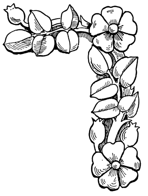 Floral coloring #3, Download drawings