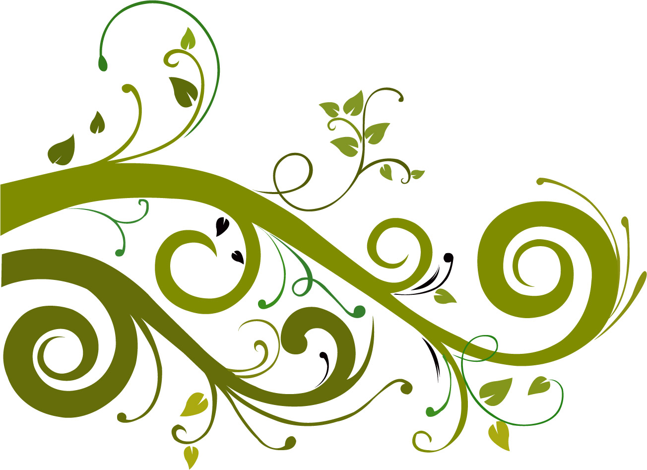 Floral Vector clipart #10, Download drawings