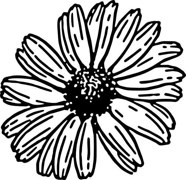 flower outline svg #667, Download drawings