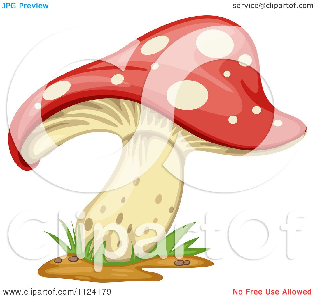 Fly Agaric clipart #6, Download drawings