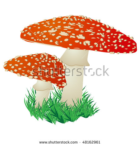 Fly Agaric clipart #4, Download drawings