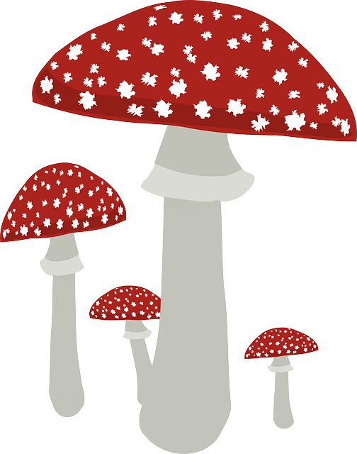 Fly Agaric clipart #3, Download drawings