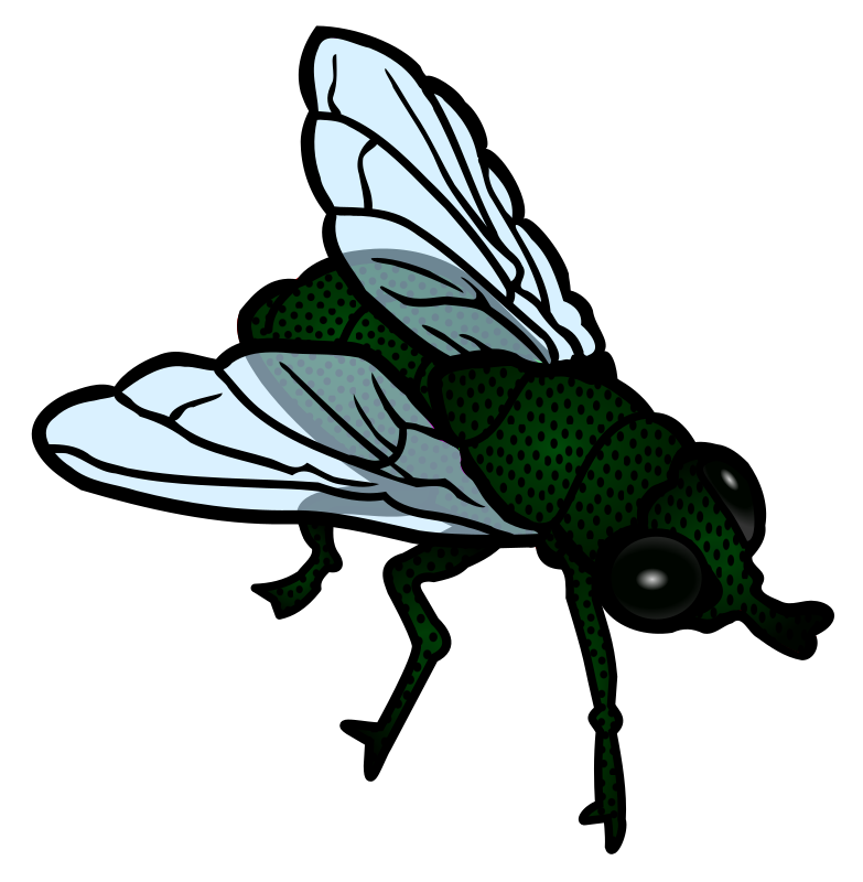 Fly clipart #13, Download drawings