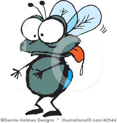 Fly clipart #9, Download drawings