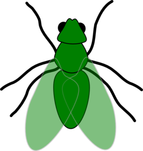 Fly clipart #16, Download drawings