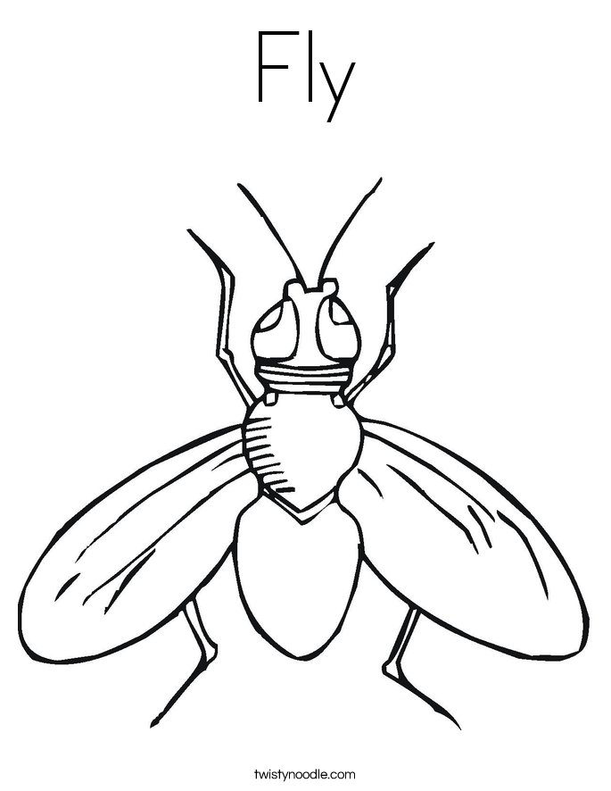 Fly coloring #19, Download drawings