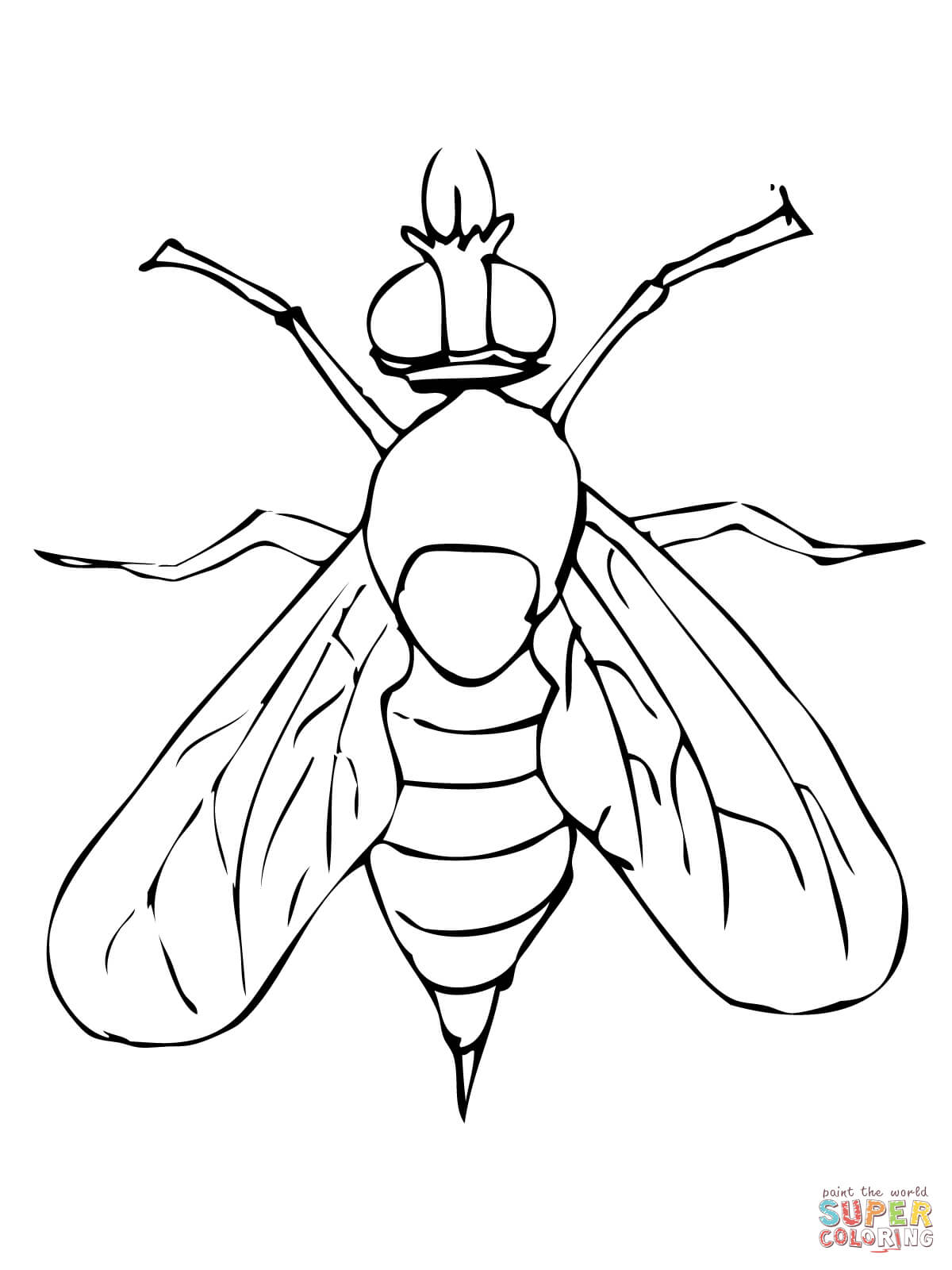 Fly coloring #6, Download drawings