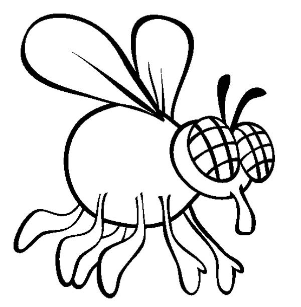 Fly coloring #13, Download drawings