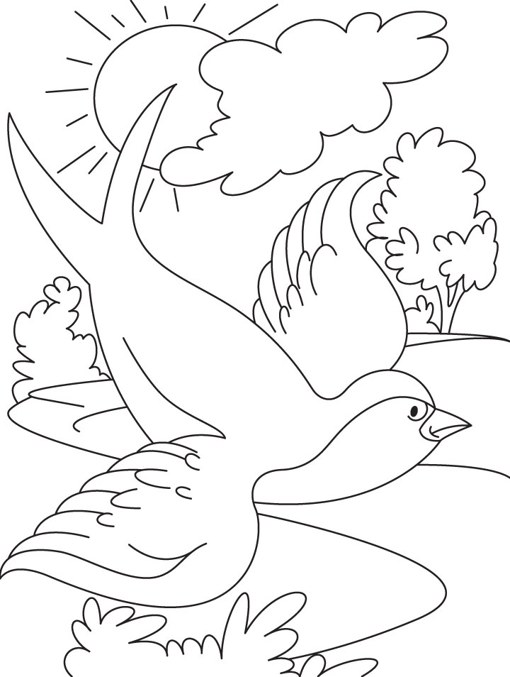 Flying coloring #2, Download drawings