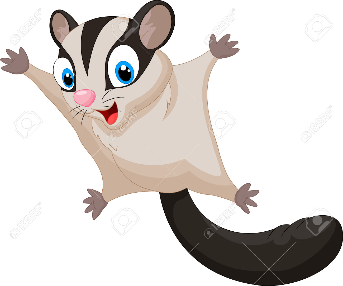 Flying Squirrel clipart #9, Download drawings