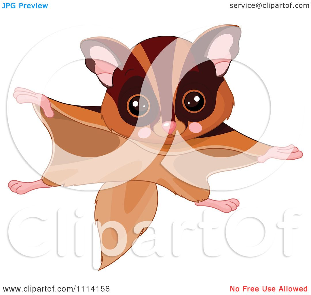 Flying Squirrel clipart #1, Download drawings