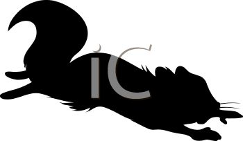 Flying Squirrel clipart #11, Download drawings