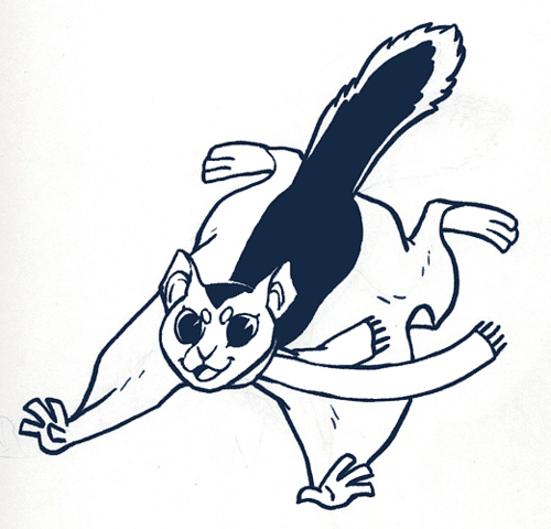 Flying Squirrel clipart #7, Download drawings
