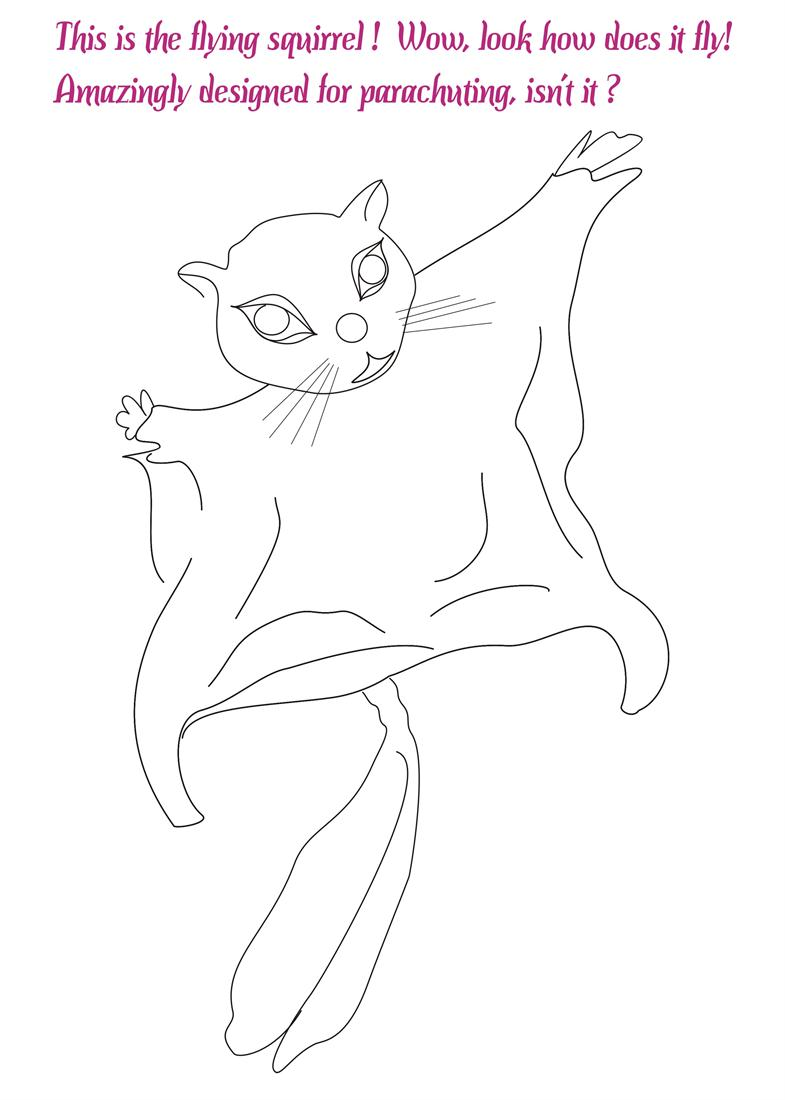 Flying Squirrel coloring #17, Download drawings