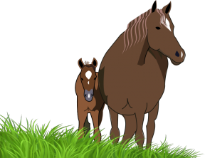 Foal clipart #7, Download drawings
