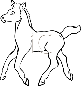 Foal clipart #16, Download drawings