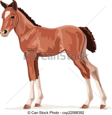 Foal clipart #13, Download drawings