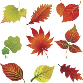 Foliage clipart #11, Download drawings