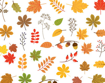 Foliage clipart #15, Download drawings