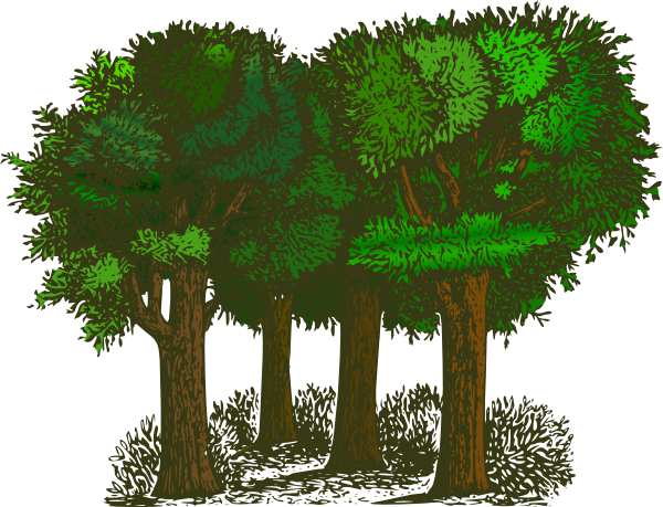 Forest clipart #6, Download drawings