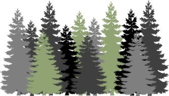 Forest clipart #7, Download drawings