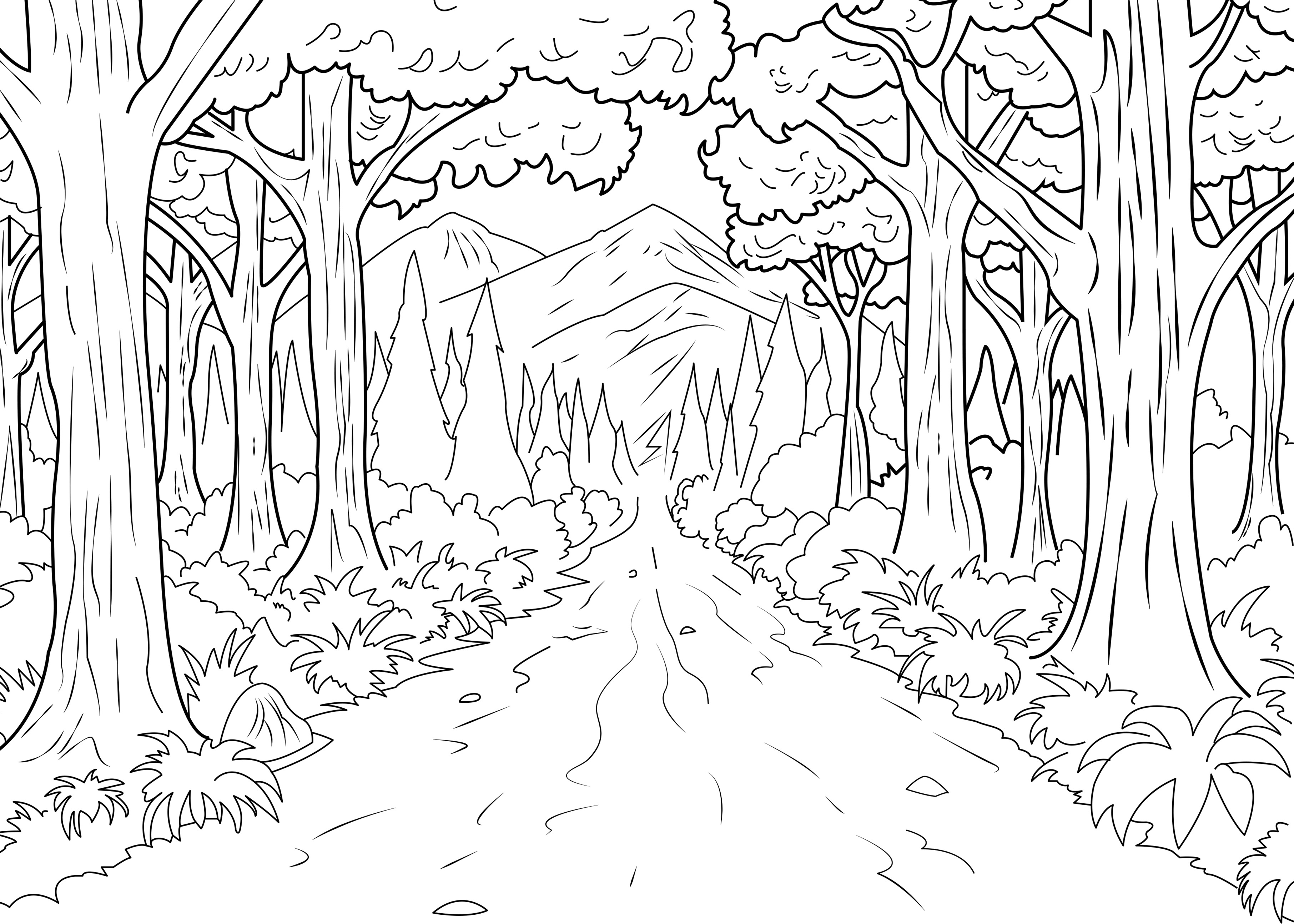 Forest coloring #2, Download drawings