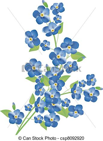 Forget-Me-Not clipart #17, Download drawings