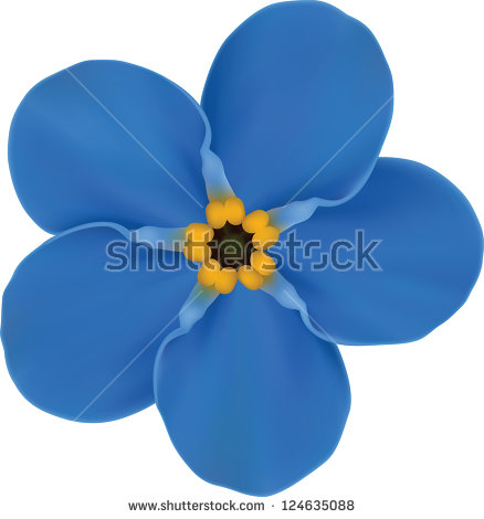 Forget-Me-Not clipart #16, Download drawings